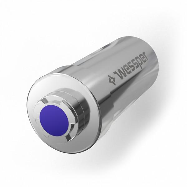 Filtr Prysznicowy (srebrny) WES081